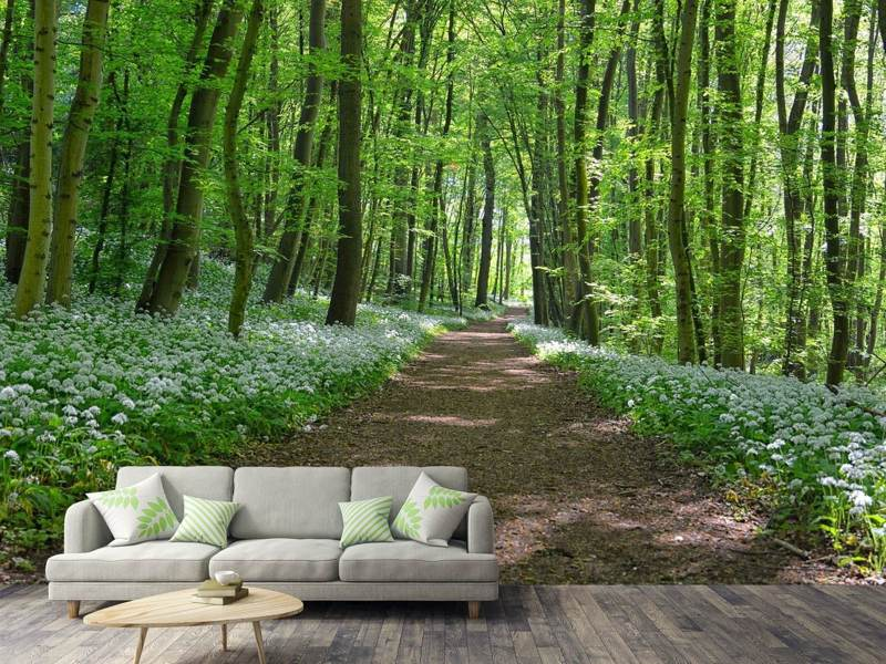 Photo Wallpaper We love the summer in the woods