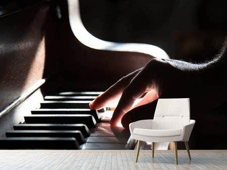 Photo Wallpaper piano player