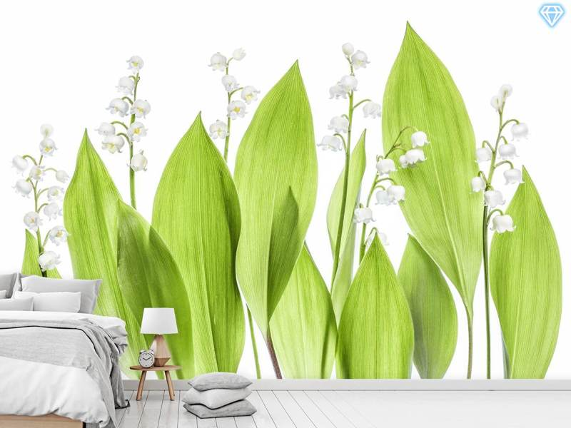 Photo Wallpaper Lily Of The Valley