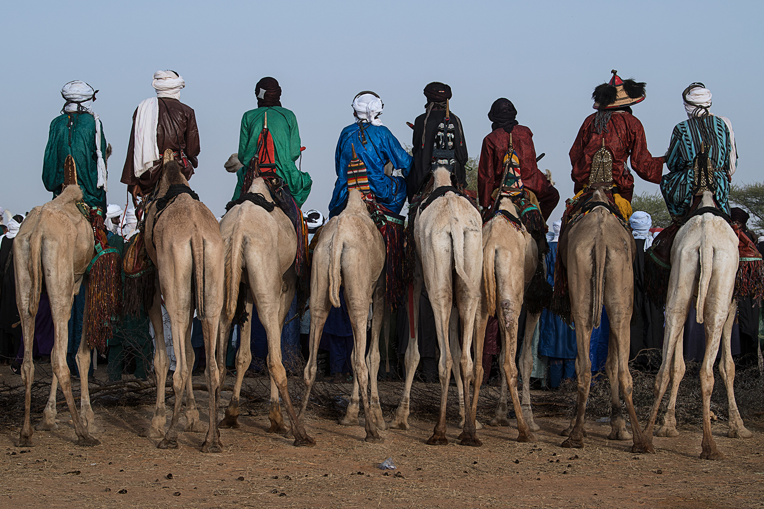 Valokuvatapetti Watching The Gerewol Festival From The Camels - Niger