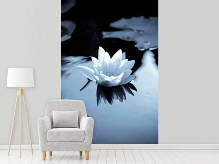 Valokuvatapetti Black And White Photograph Waterlily