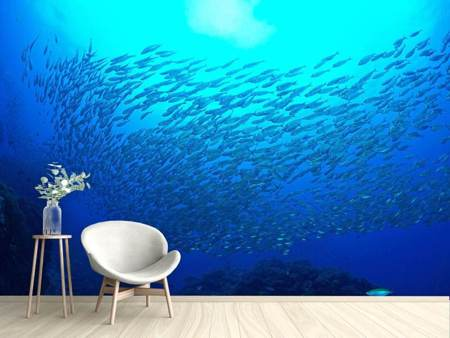 Photo Wallpaper Fish World